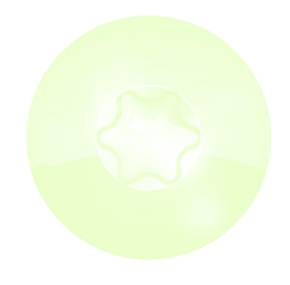 Vis de pose r/églable SPTR-C empreinte Torx 25 6X120 Boite de 100 Vis avec 100 Chevilles Blanc