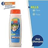 Image of Hartz UltraGuard Rid Flea & Tick Oatmeal Dog Shampoo