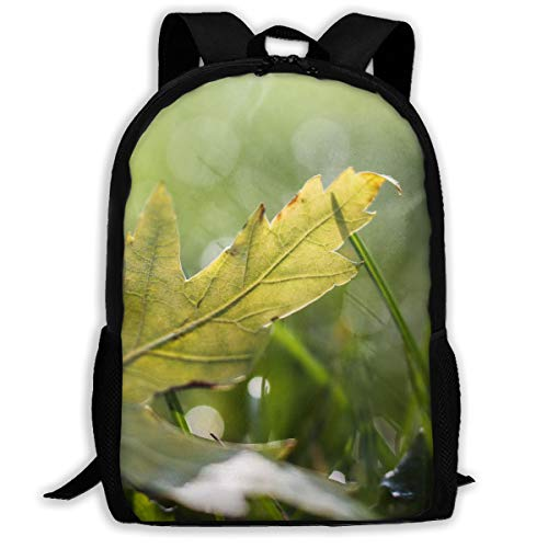 KIENGG Nature Leaves Drops Dew Unisex Adult Unique Backpack,School Casual Sports Book Bags,Durable Oxford Outdoor College Laptop Computer Shoulder Bags,Lightweight Travel ()