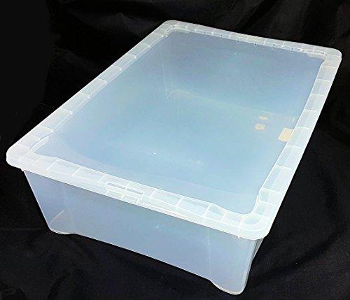 Klarsichtbox mit Deckel - 4 Größen - 3er und 5er Sets (55x39x16 - 1er)