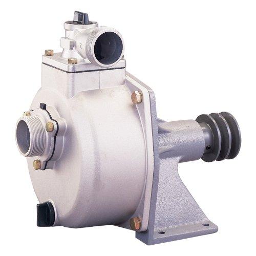 NorthStar Freshwater Pump - 7920 GPH, 2in., Model# 10627
