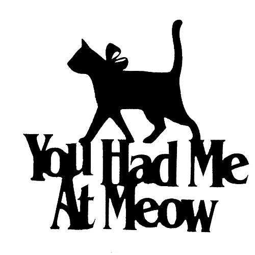 - Wall Word Art Decorative Wood Sign for Pet, Dog, Cat, Horse, Pig, Animal Lovers with Fun Sayings and Quotes - Real Wood - Made in USA - (You Had Me at Meow)