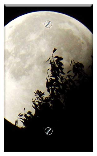 Single-Gang Blank Wall Plate Cover - Moon Eclipse Moon And Foliage Full Moon Dark Sky