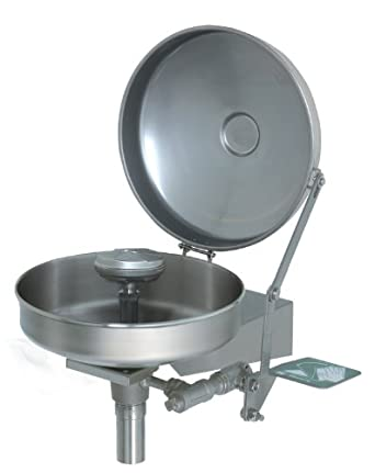 Haws 7778B Wall-Mounted Eye/Face Wash with Axion MSR Eye/Face Wash Head and All Stainless Steel Components