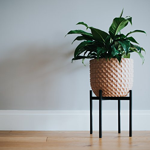 Stylish Plant Stand (MEDIUM) | Indoor, Outdoor Flower Pot Stands | Planter Stand for House, Garden, & Patio | Holders for Pots & Plants | Rust Resistant Potted Plant Holder | Tall Pot Trivet (Small Trees For Potted Patios)