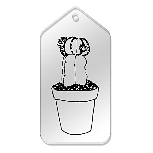 tg00067980 X 'cactus' Etiquetas 51 99 Mm Azeeda 10 Grande De Claras O5Tvvx