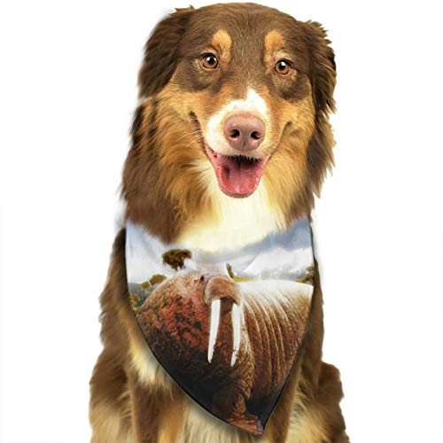 Dog Bandana Triangle Scarfs Puppy Bibs Accessories, Walrus Grassland, for Dogs, Cats, Pet Birthday Party Gifts Supplies -