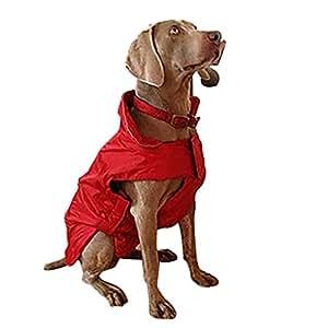 Amazon.com : Dog Jacket, Fashion Waterproof Large Dog