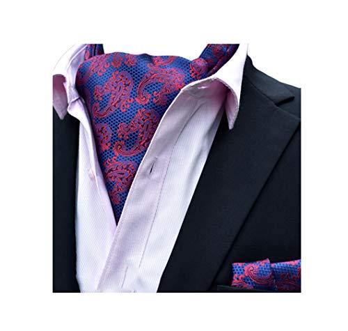 Pleated Necktie Silk (MOHSLEE Men's Paisley Cravat Ties Handky Classic Ascot Necktie Pocket Square Set)