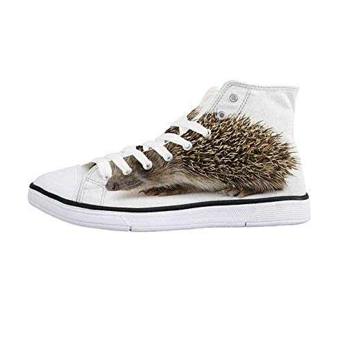 Hedgehog Comfortable High Top Canvas Shoes,Small Cute Mammal with Spiked Hair on Its Back and Sides Wildlife Photography Decorative for Women Girls,US 5