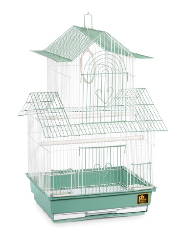 (Prevue Hendryx SP1720-4 Shanghai Parakeet Cage, Green and White)