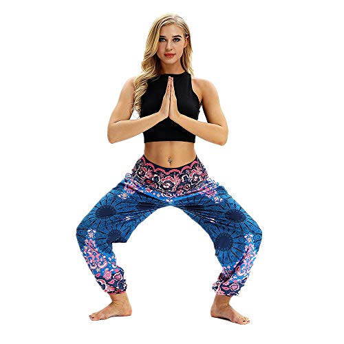 iYBUIA Men Women Casual Printed Loose Hippy Yoga Trousers Baggy Boho Aladdin Harem Pants(Light Blue,Free Size)