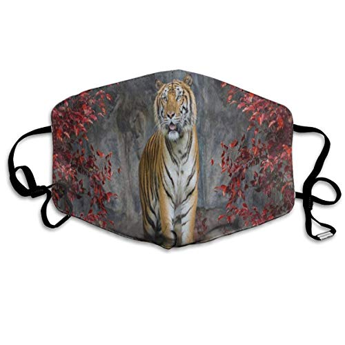 FunnyCustom Mouth Mask Painting Portrait of The Tiger Face Mouth Cover Winter Healthy Washable for Students Halloween ()