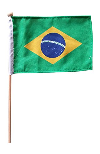 Tinisa's World 10 Premium 4x6 Inch Brazil Brasil Brazilian Hand Held Stick Flags Safety Ball Top