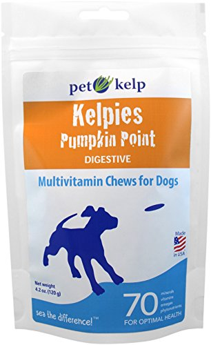 Pet Kelp Pumpkin Point, 4.2-Ounce