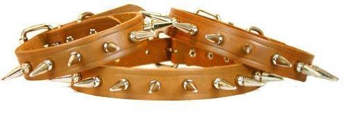 Bully collars Liberty Spiked Dog Collar, 1 x 19-Inch