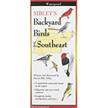 Sibley's Backyard Birds of the Southeast