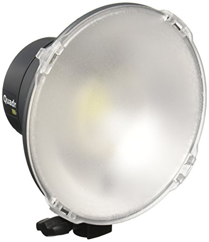 Elinchrom Quadra HS Head (Pro Flashtube)