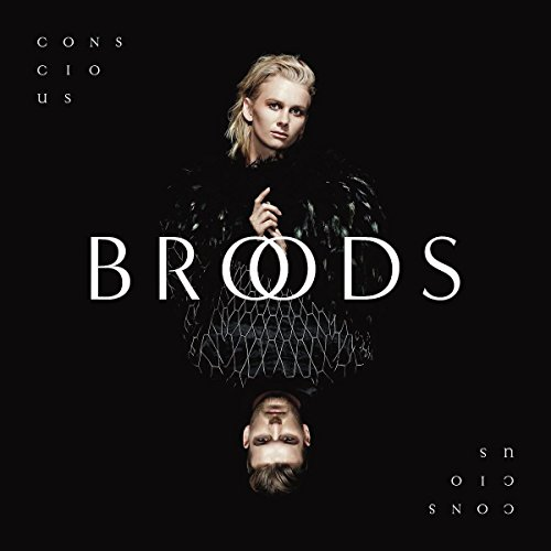 Conscious Broods