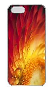 case awesome cases sunshine in petals PC Transparent Case for iphone 5/5S