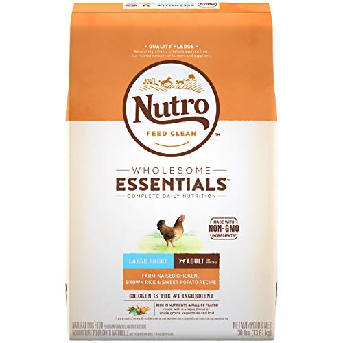 NUTRO Wholesome Essentials Large