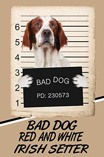 Bad Dog Red and White Irish Setter: Beer Tasting Journal Rate and Record Your Favorite Beers Collect Beer Name, Brewer, Origin, Date, Sampled, Rating, ... meter, Note and Flavor wheel ()