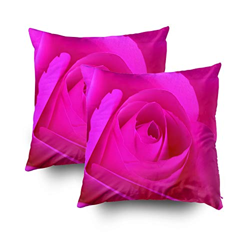 Jacrane Easter Decorative Throw Pillowcase Cover 18X18Inch 2PCS Suit Valentines Day Rose Pink Made Paper Background Other Abstract Day Concept Art Gift Soft Cuddle Square Pillow Case with Zippered