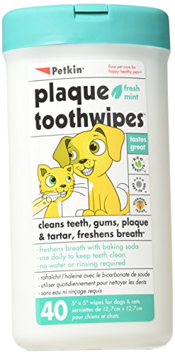 Petkin Toothwipes Dogs/Ca Size 40ct Toothwipes Dogs/Cats 40ct (Difference Between Doesn T And Didn T)