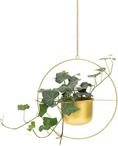 Brass Gold Metal Hanging Plant Pot, Round Decorative Flower Pot Holder with Gold Planter, Mid Century Cactus and Succulent Planter, Living Room, Farmhouse Decor, Gold Party and Wall Decoration, Indoor