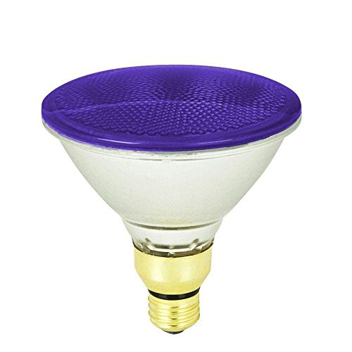 Purple Flood Light Bulb