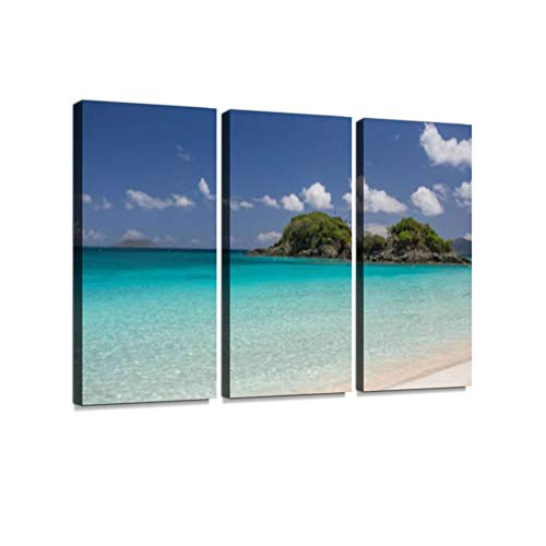 Trunk Bay Beach - St. John, USVI 3 Pieces Print On Canvas Wall Artwork Modern Photography Home Decor Unique Pattern Stretched and Framed3 Piece -