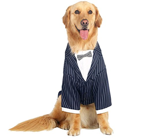 Border Collie Costumes (PetBoBo Couture Formal Tuxedo with Striped Tie Costume Company Business Suit, Wedding Party Pet Clothes, Large Dogs Costumes for Bulldogs, Golden Retriever, Husky, Samoyed, Border Collie)
