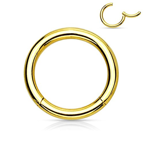 MoBody Hinged Nose Hoop Clicker Surgical Steel Segment Ring Septum Helix Cartilage Lip Piercing Jewelry (18G (1mm), 1/4