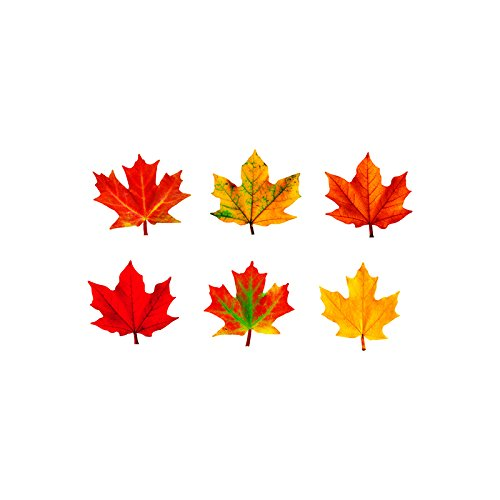 Mosaic Maple Leaf (Trend Enterprises Maple Leaves Discovery Accents Variety Pack)