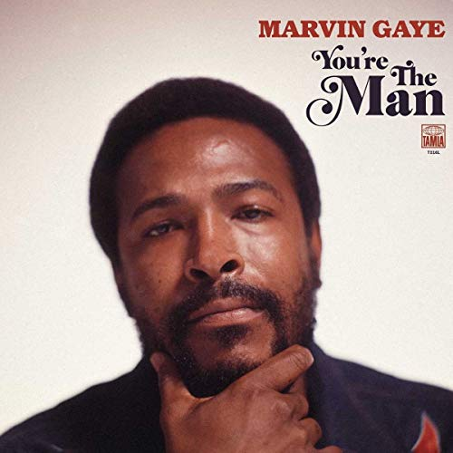 You're The Man (Best Of Marvin Gaye)