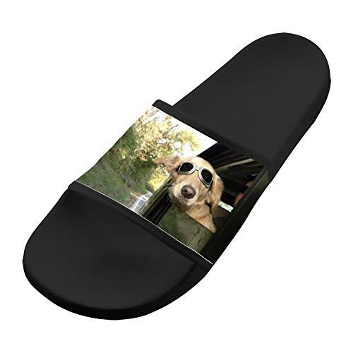 Comfortable Slip Black Dog Sandals Men Sandals Non Soft amp; Women Casual Slippers qZCIE
