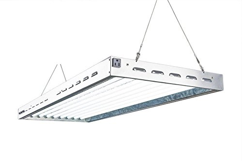DoubleLux DL8048 T5 Flourescent 4ft 8 Lamps with 6500K and 40000 Lumen Grow Light System 8 tubes included by DuroLux