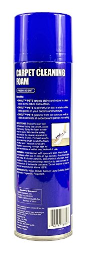Shout for Pets Pro Strength Carpet Cleaning Foam | Best Pet Carpet Cleaner For All Tough, Set-In Stains, 22 ounces, Fresh Scent by Shout for Pets (Image #1)