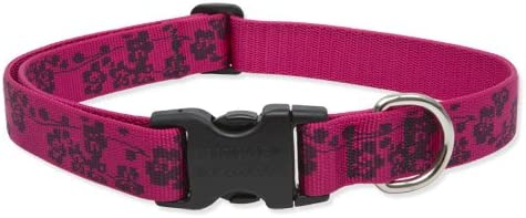 Lupine 1-Inch Plum Blossom Adjustable Dog Collar