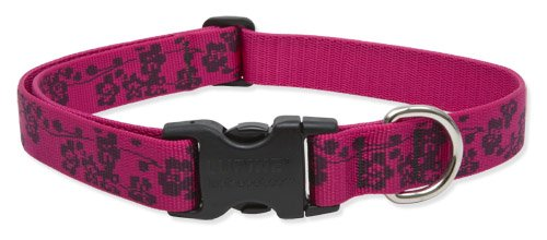 Lupine 1-Inch Plum Blossom 12-20-Inch Adjustable Dog Collar for Medium and Large Dogs, My Pet Supplies