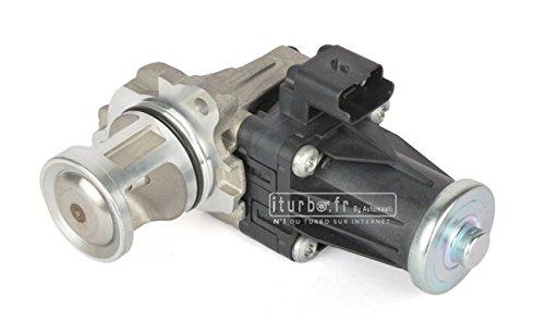 Válvula EGR 1.4 - 1.5 - 1.6 HDI TDCi 68 A 115 CV Equivalence 1618 LN: Amazon.es: Coche y moto