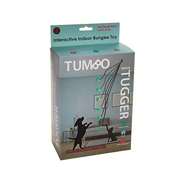 Tumbo Indoor Tugger with Plush Ball , 1 Count Click on image for further info. 2