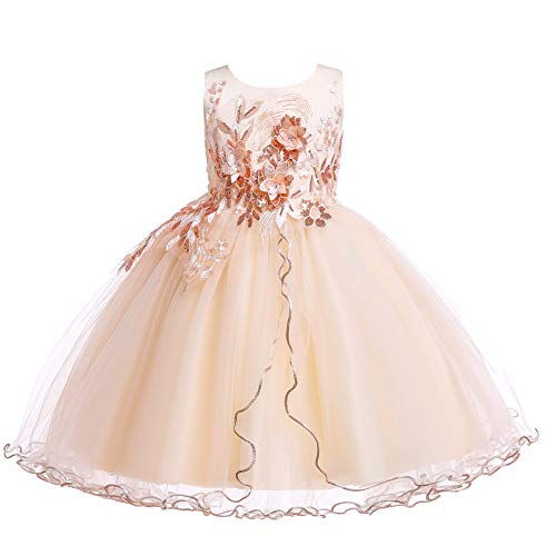 Weileenice Kids Big/Little Princess Girl Costume Lace Dress Girl Flower Pageant Tutu Dresses (2-3Years, Light Gold)
