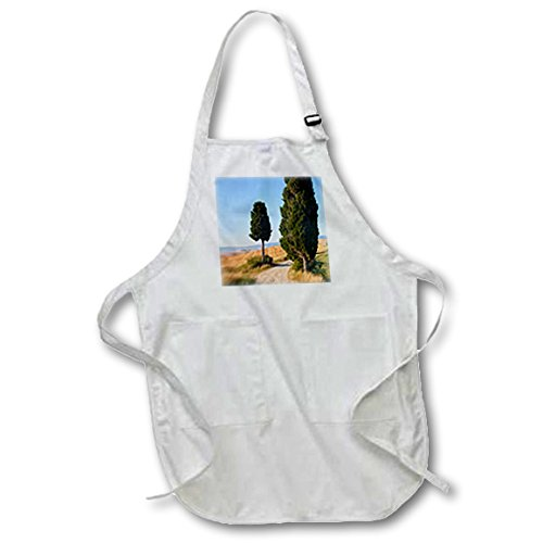 danita-delimont-italy-winding-road-val-d-orica-tuscany-italy-full-length-apron-with-pockets-22w-x-30