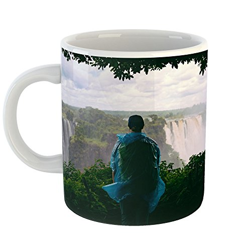 Falls - 11oz Coffee Cup Mug - Modern Picture Photography Artwork Home Office Birthday Gift - 11 Ounce (DCF0-DB6F9) ()