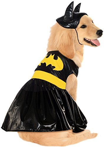 DC Comics Pet Costume, Small, Batgirl (Wonder Woman Dog Costume)