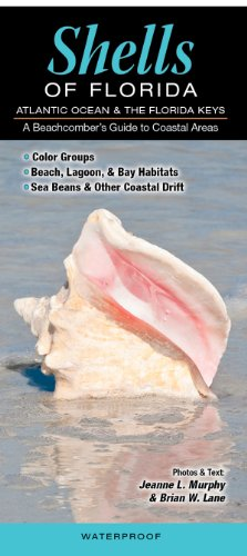 - Shells of Florida-Atlantic Ocean & Florida Keys: A Beachcomber's Guide to Coastal Areas