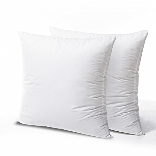 Phantoscope 2 Packs Throw Pillow Inserts Hypoallergenic Square Form Sham Stuffer 20 x 20 inches