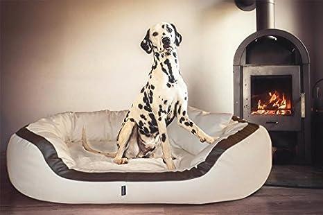 tierlando PEPPER Ortopédico Sofá para perro en Piel artificial 13cm potente Colchón VISCOSO Borde acogedor XXL Crema 160cm XXL Anti-pelo Forma estable: ...