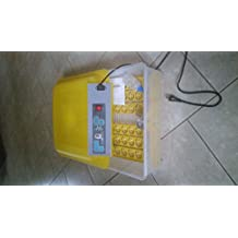 Automated Egg Incubator
